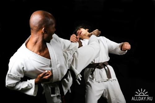 Clipart - Martial Art