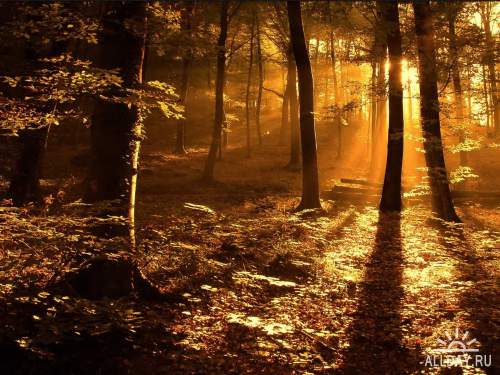 Замечательная подборка красивой природы .Фото обои 3.