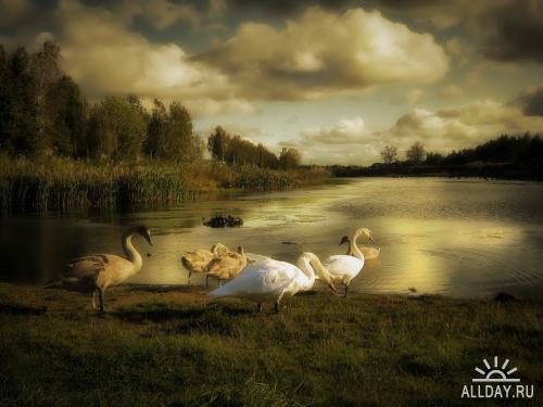 Мир в Фотографии - World In Photo 163