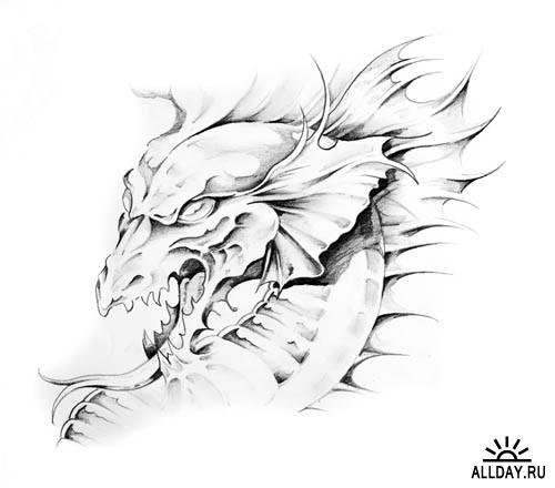 Драконы - искусство татуировки | Dragon tattoo art - UHQ Stock Photo