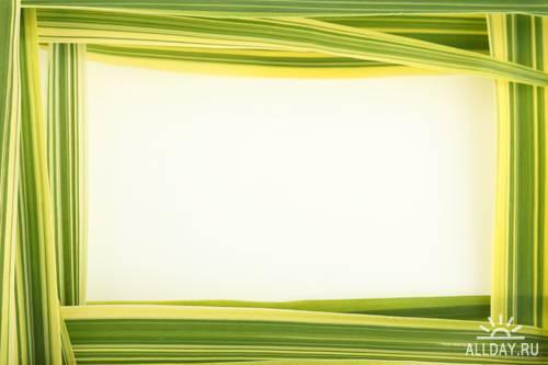 Green frame - Зеленая рамка