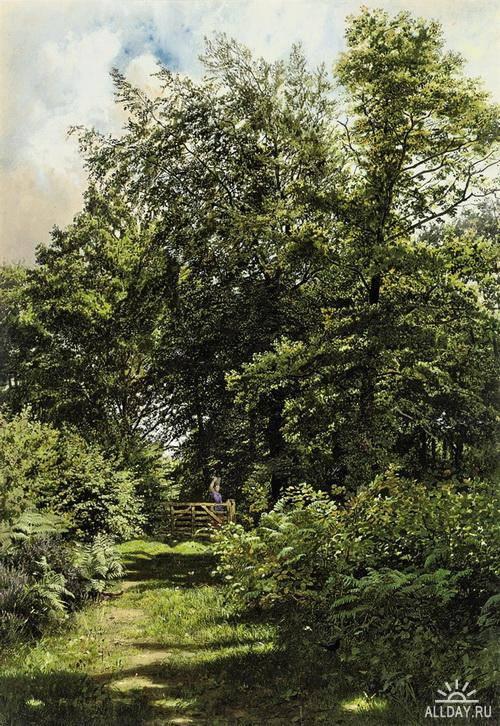 Английский художник Edmund George Warren (1834–1909)