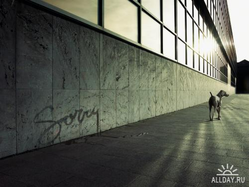 Работы креативщика Koen Demuynck