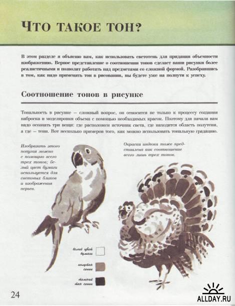Тревор Ваух - Вы можете писать животных акварелью