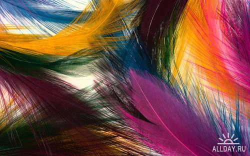 65 Best Mixed Color HQ Unbelievable Wallpapers