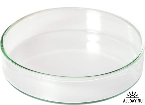 Фотосток: Чашка Петри, лабораторное стекло, кювета