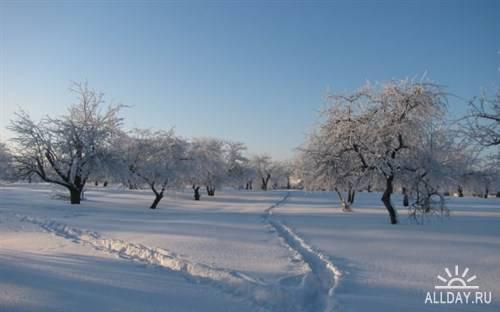 Сборник фото зимней поры для фона рабочего стола 3