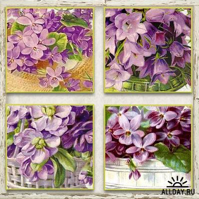 Cajoline - Vintage Flowers 4 - Personal Use