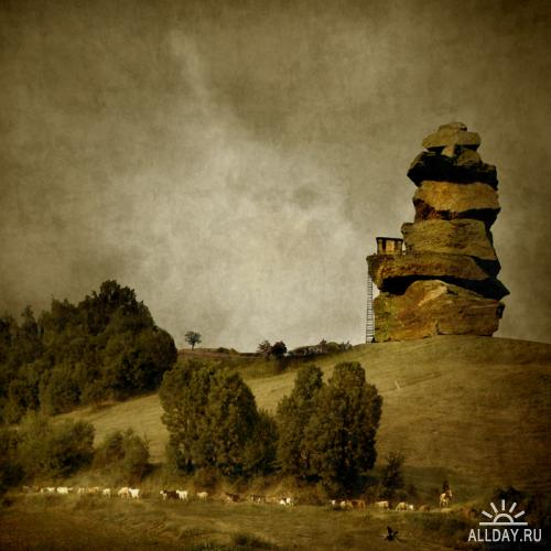 Работы фотографа Magdalena Wanli