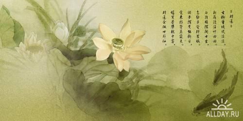xC46R3ls0H.jpg