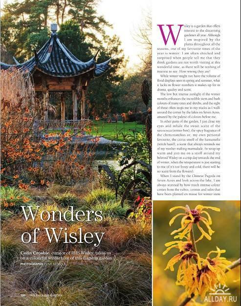 The English Garden №11 (November 2011)