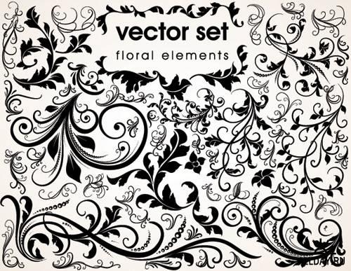 Stock Vectors - Floral Design   Растительный дизайн