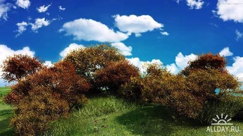 Природа - широкоформатные пейзажи